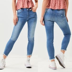 PacSun Spring Street Perfect Fit Jeggings Size 27